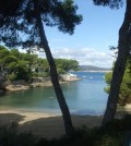 El Caló d'en Pellicer, conocida como la playa pequeña de Santa Ponsa (Calvià)