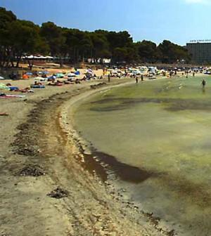 Playa de Torá