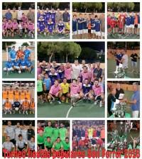 torneo-fiestas-populares-son-ferrer-2016