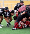 El toro Rugby 1