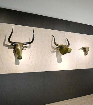 bous de Costitx