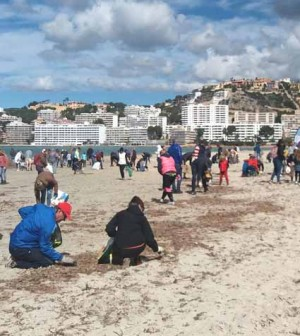 Limpieza platja Santa Ponça 2018 (2)