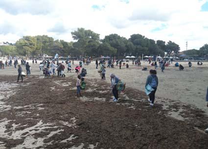 Limpieza platja Santa Ponça 2018 3