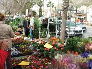 Las plantas y flores también están presentes en el mercado